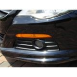 Lower Grille for Vehicles w/ Foglights Drivers (Left) Side