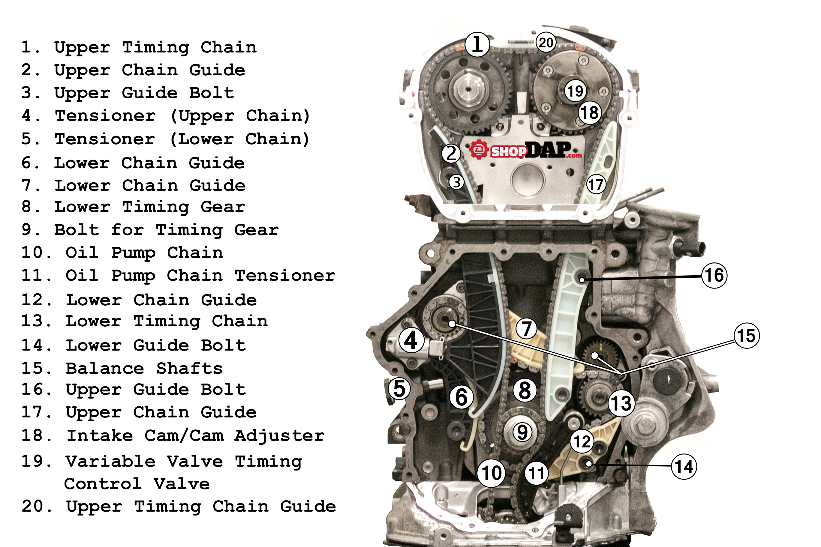 [DIAGRAM_3US]  2.0t TSI TIming Chain Component Diagram for VW and Audi - Articles -  Deutsche Auto Parts | Vw Audi Engine Diagram |  | Deutsche Auto Parts