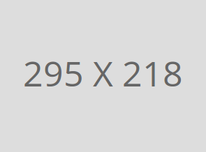 img-295-218